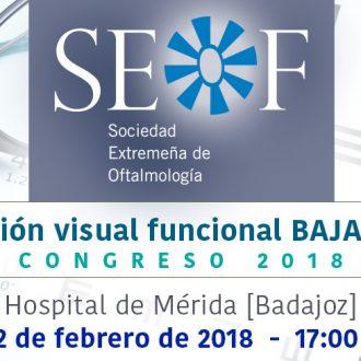 Seminario SEOF febrero 2018